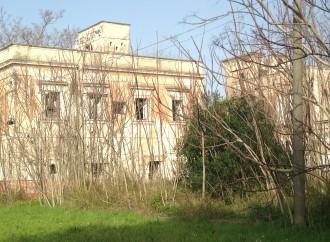 Taranto, viaggio nella città proibita