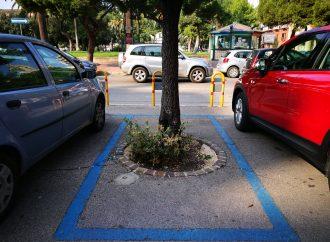 Strisce blu,  pulizia strade ed isole ecologiche: cosa cambia a Taranto dal 4 maggio