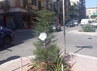Taranto, nuovo look per via Battisti. Oggi un sopralluogo