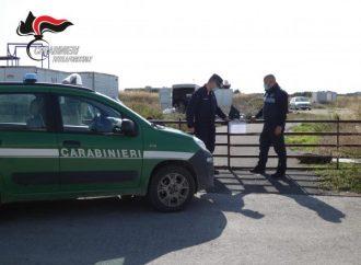 Taranto, sequestrato autodemolitore abusivo